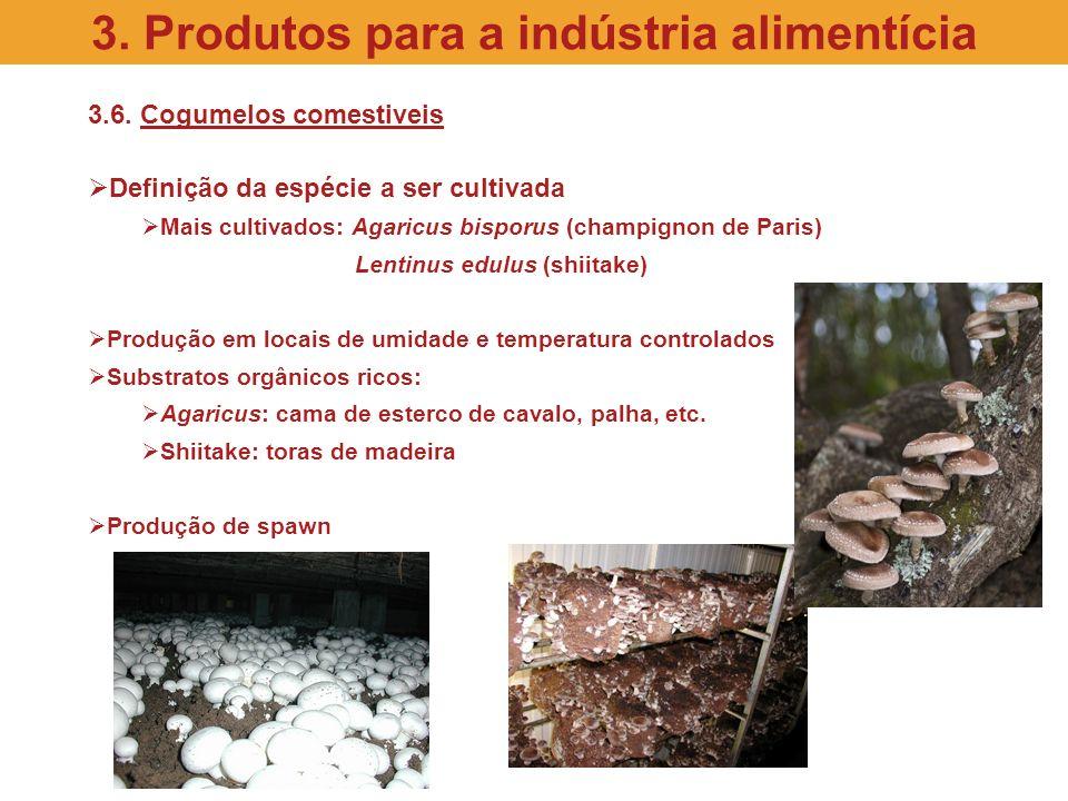 3.6. Cogumelos comestiveis Definição da espécie a ser cultivada Mais cultivados: Agaricus bisporus (champignon de Paris) Lentinus edulus (shiitake) Pr