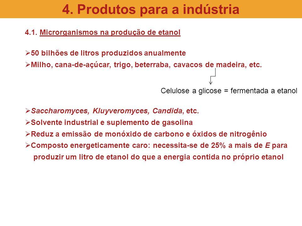 4.1. Microrganismos na produção de etanol 50 bilhões de litros produzidos anualmente Milho, cana-de-açúcar, trigo, beterraba, cavacos de madeira, etc.