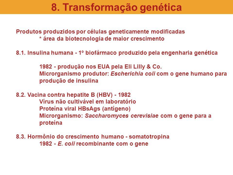 Produtos produzidos por células geneticamente modificadas * área da biotecnologia de maior crescimento 8.1. Insulina humana - 1º biofármaco produzido