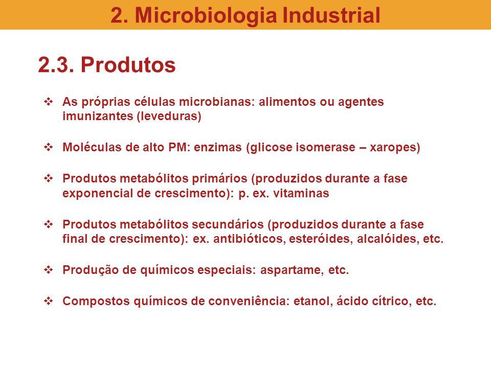 2.3. Produtos As próprias células microbianas: alimentos ou agentes imunizantes (leveduras) Moléculas de alto PM: enzimas (glicose isomerase – xaropes