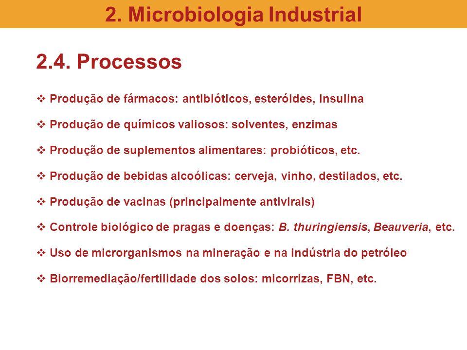 2.4. Processos Produção de fármacos: antibióticos, esteróides, insulina Produção de químicos valiosos: solventes, enzimas Produção de suplementos alim