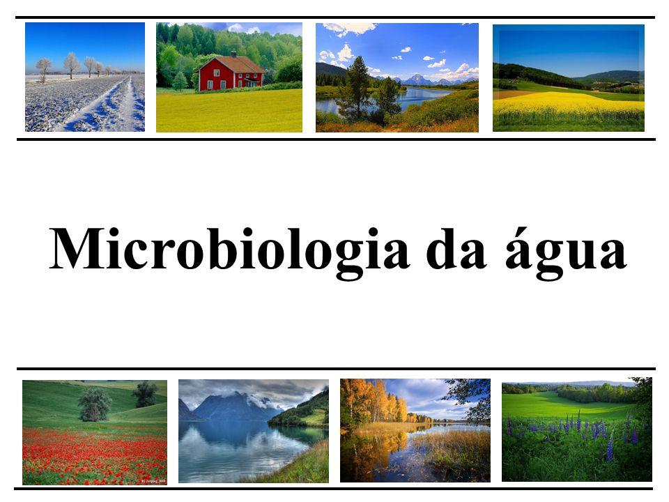 Doenças relacionadas a água Burkholderia cepacia – bactéria Gram negativa Sintomas: infecções respiratórias Disseminação: de pessoa a pessoa, superfícies contaminadas, ambiente Controle: resistente a maioria dos antibióticos