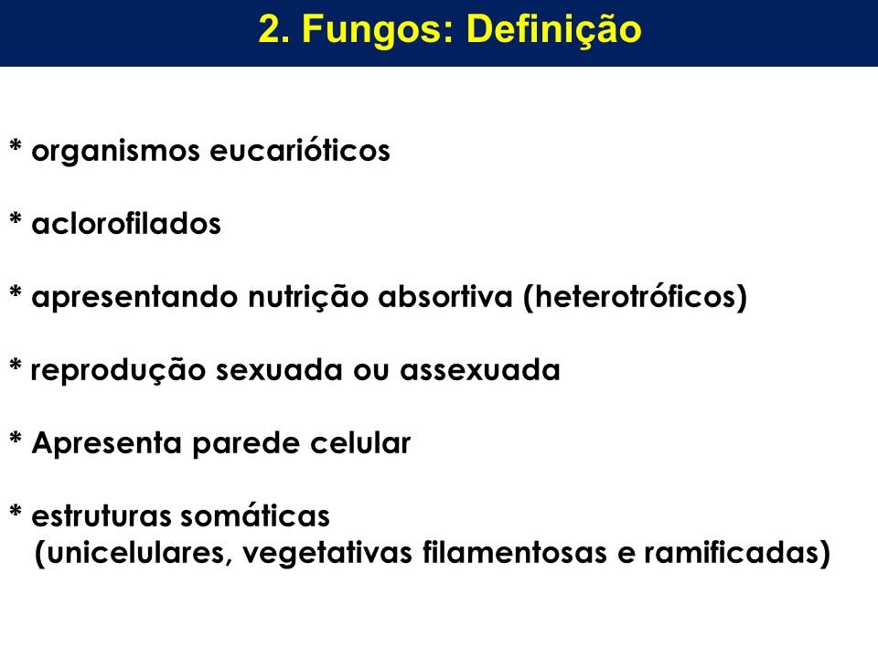 * organismos eucarióticos * aclorofilados * apresentando nutrição absortiva (heterotróficos) * reprodução sexuada ou assexuada * Apresenta parede celu