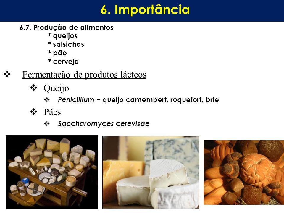 Fermentação de produtos lácteos Queijo Penicillium – queijo camembert, roquefort, brie Pães Saccharomyces cerevisae 6.7. Produção de alimentos * queij