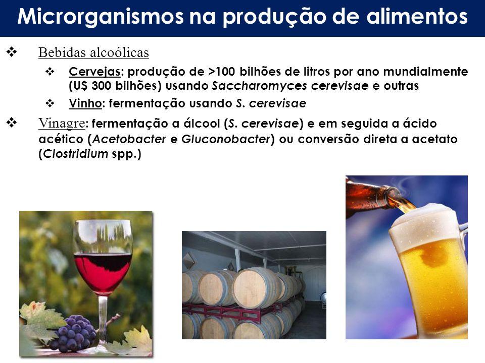 Microrganismos na produção de alimentos Bebidas alcoólicas Cervejas: produção de >100 bilhões de litros por ano mundialmente (U$ 300 bilhões) usando S