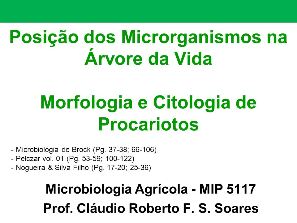 Posição dos Microrganismos na Árvore da Vida Morfologia e Citologia de Procariotos Microbiologia Agrícola - MIP 5117 Prof. Cláudio Roberto F. S. Soare