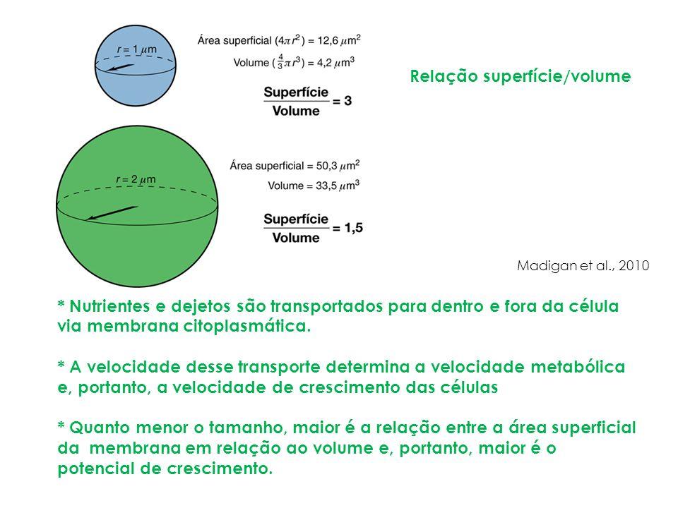 Relação superfície/volume * Nutrientes e dejetos são transportados para dentro e fora da célula via membrana citoplasmática. * A velocidade desse tran