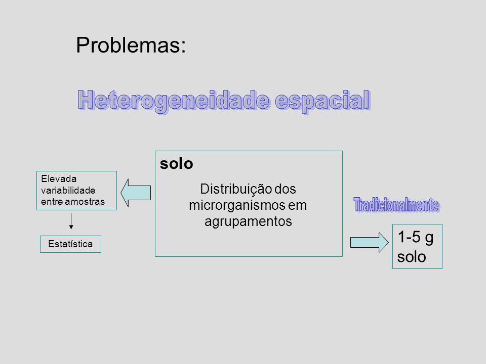 Problemas: solo Distribuição dos microrganismos em agrupamentos 1-5 g solo Elevada variabilidade entre amostras Estatística