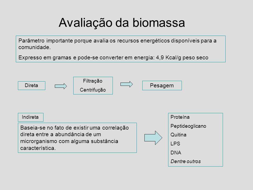 Avaliação da biomassa Parâmetro importante porque avalia os recursos energéticos disponíveis para a comunidade. Expresso em gramas e pode-se converter
