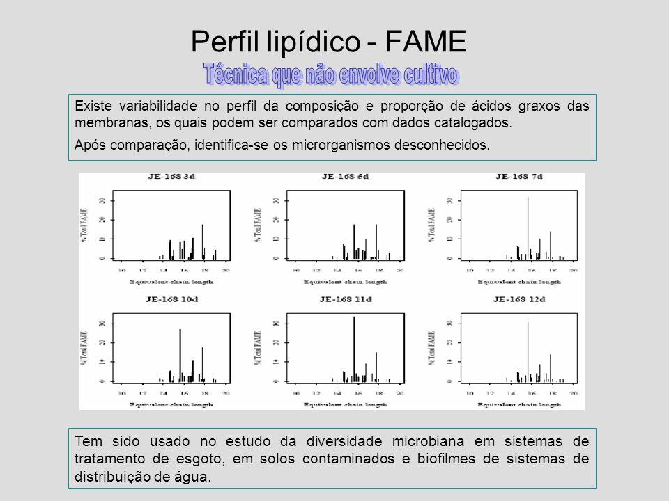 Perfil lipídico - FAME Tem sido usado no estudo da diversidade microbiana em sistemas de tratamento de esgoto, em solos contaminados e biofilmes de si