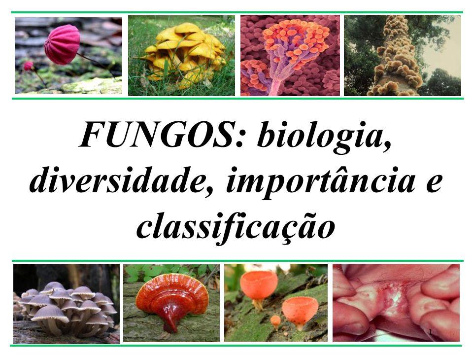 Importância 32 Doenças no homem e animais * mais comuns em regiões tropicais * pacientes imunodeprimidos: AIDS, câncer, transplantes ex.