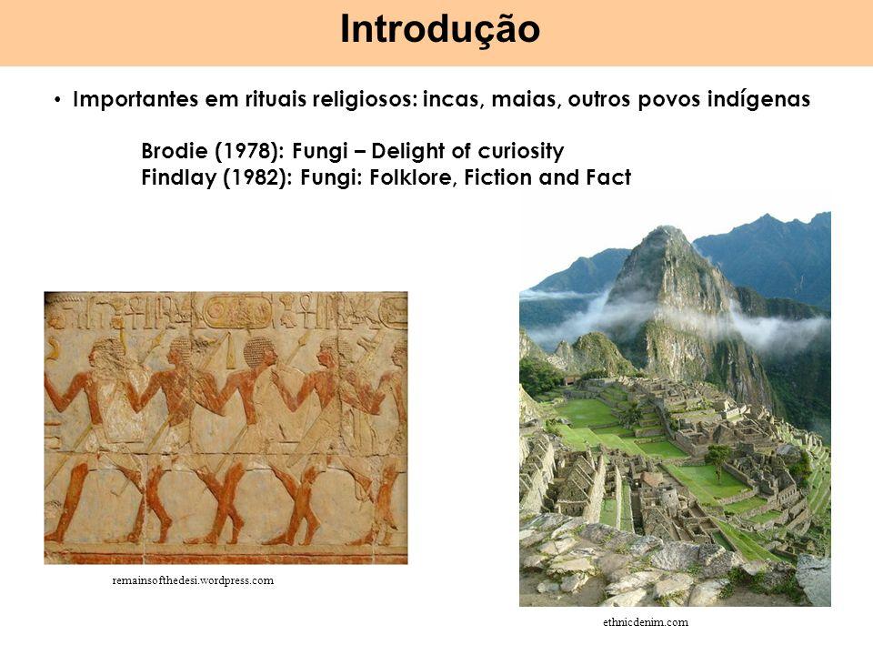 Importantes em rituais religiosos: incas, maias, outros povos indígenas Brodie (1978): Fungi – Delight of curiosity Findlay (1982): Fungi: Folklore, F