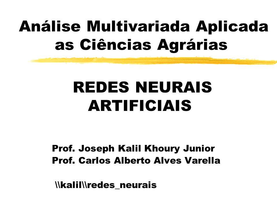 Análise Multivariada Aplicada as Ciências Agrárias Prof. Joseph Kalil Khoury Junior Prof. Carlos Alberto Alves Varella \\kalil\\redes_neurais REDES NE