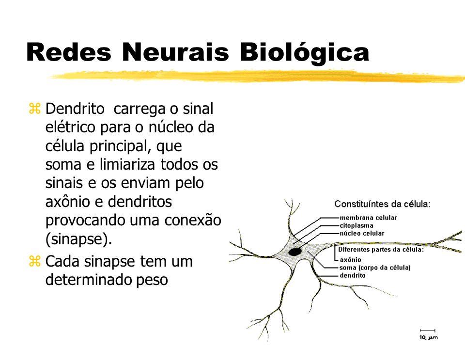 Redes Neurais Biológica zDendrito carrega o sinal elétrico para o núcleo da célula principal, que soma e limiariza todos os sinais e os enviam pelo ax