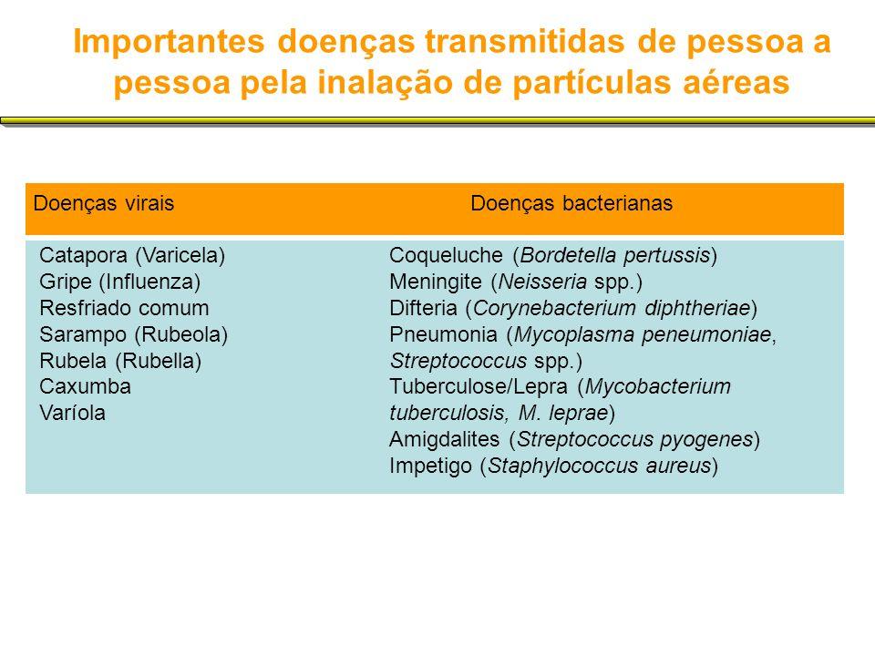 Importantes doenças transmitidas de pessoa a pessoa pela inalação de partículas aéreas Doenças viraisDoenças bacterianas Catapora (Varicela)Coqueluche (Bordetella pertussis) Gripe (Influenza)Meningite (Neisseria spp.) Resfriado comumDifteria (Corynebacterium diphtheriae) Sarampo (Rubeola)Pneumonia (Mycoplasma peneumoniae, Rubela (Rubella)Streptococcus spp.) Caxumba Tuberculose/Lepra (Mycobacterium Varíola tuberculosis, M.