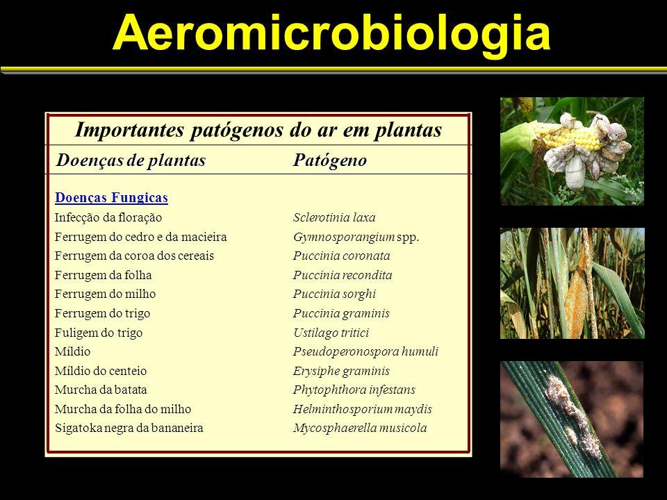 Aeromicrobiologia Importantes patógenos do ar em plantas Doenças de plantas Doenças de plantasPatógeno Doenças Fungicas Infecção da floraçãoSclerotinia laxa Ferrugem do cedro e da macieiraGymnosporangium spp.