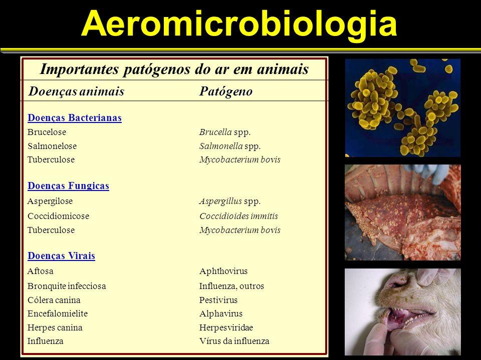 Aeromicrobiologia Importantes patógenos do ar em animais Doenças animais Doenças animaisPatógeno Doenças Bacterianas BruceloseBrucella spp.