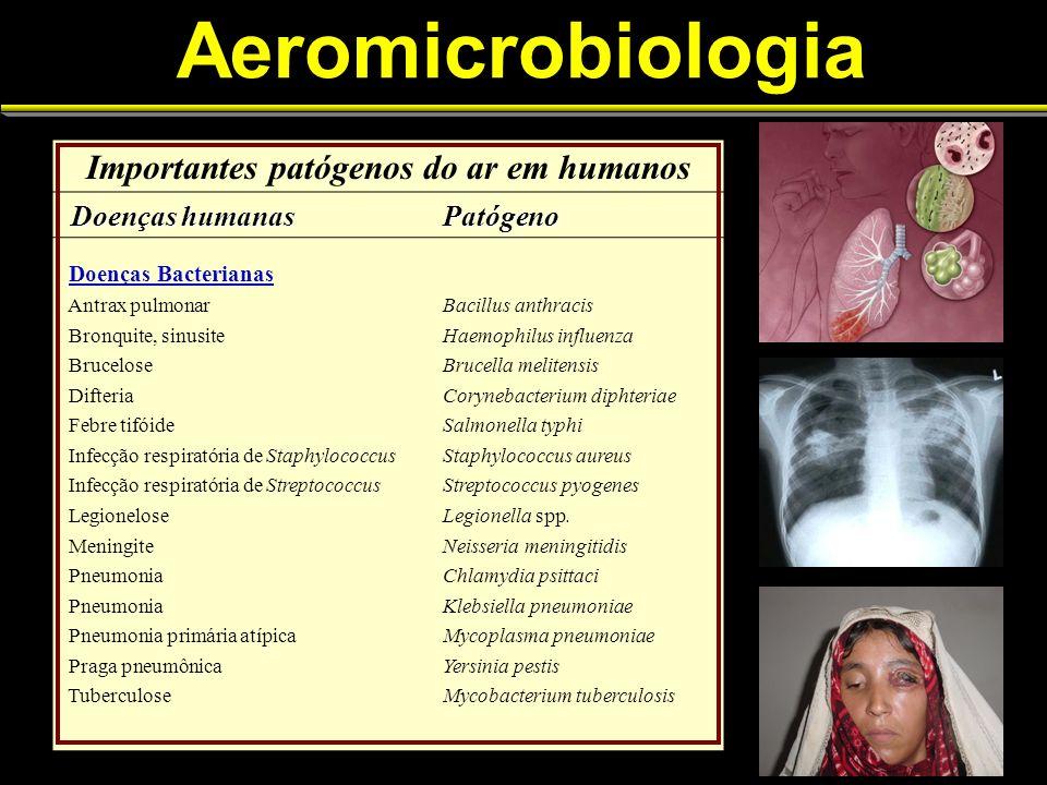Aeromicrobiologia Importantes patógenos do ar em humanos Doenças humanas Doenças humanasPatógeno Doenças Bacterianas Antrax pulmonarBacillus anthracis Bronquite, sinusiteHaemophilus influenza BruceloseBrucella melitensis DifteriaCorynebacterium diphteriae Febre tifóideSalmonella typhi Infecção respiratória de StaphylococcusStaphylococcus aureus Infecção respiratória de StreptococcusStreptococcus pyogenes LegioneloseLegionella spp.
