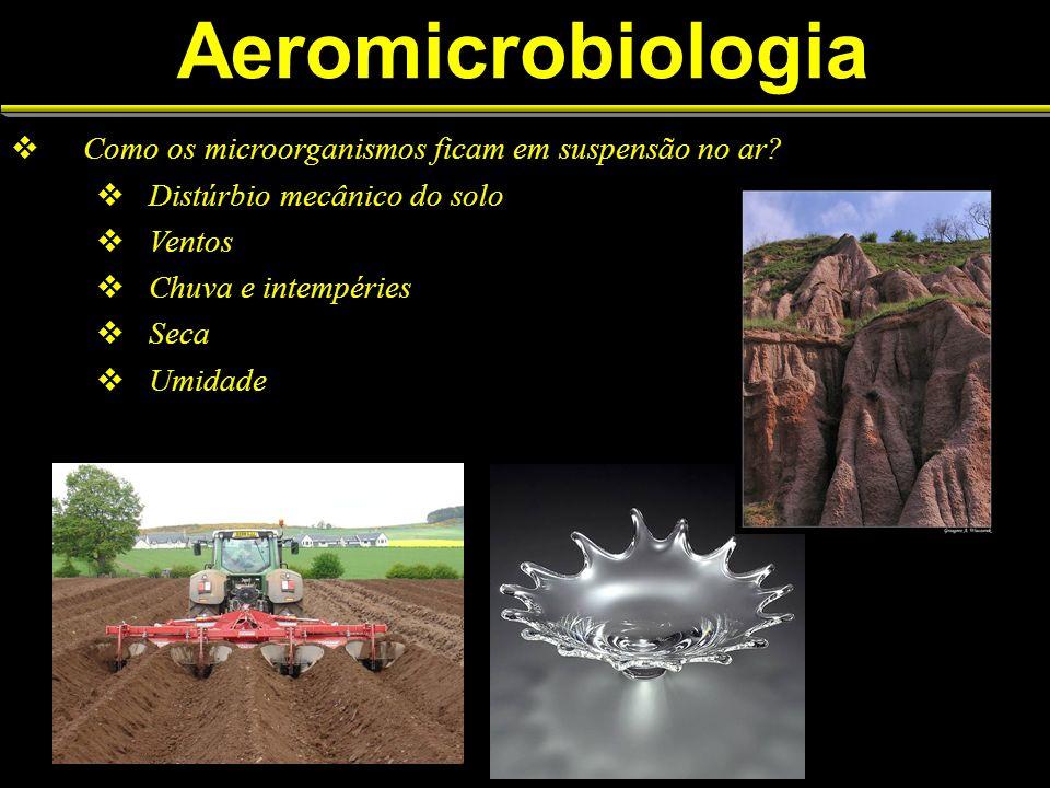 Aeromicrobiologia Como os microorganismos ficam em suspensão no ar.