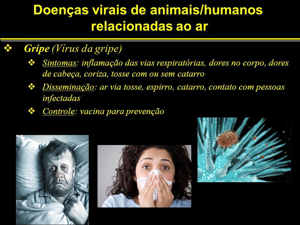 Gripe (Vírus da gripe) Sintomas: inflamação das vias respiratórias, dores no corpo, dores de cabeça, coriza, tosse com ou sem catarro Disseminação: ar via tosse, espirro, catarro, contato com pessoas infectadas Controle: vacina para prevenção Doenças virais de animais/humanos relacionadas ao ar