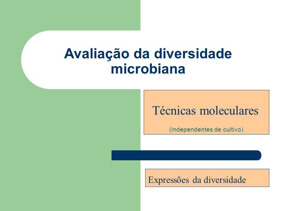 Avaliação da diversidade microbiana (métodos independentes de cultivo) Riqueza número de grupos presentes Equitabilidade abundância relativa de cada grupo Técnicas que envolvem ácidos nucléicos (RNA ou DNA).