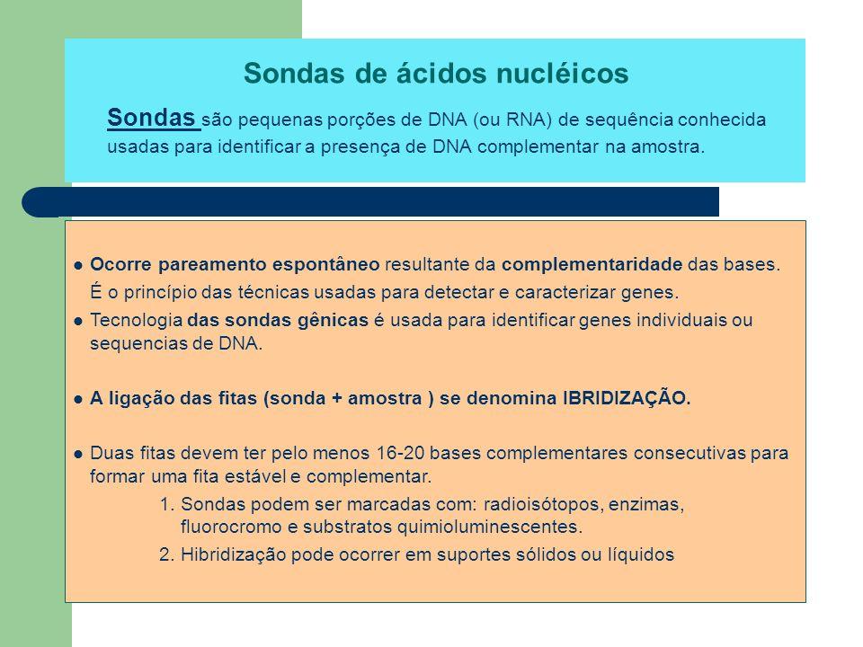 Sondas de ácidos nucléicos Sondas são pequenas porções de DNA (ou RNA) de sequência conhecida usadas para identificar a presença de DNA complementar n