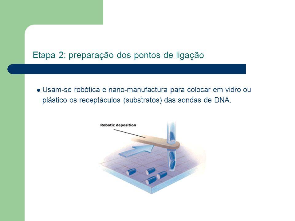 Etapa 2: preparação dos pontos de ligação Usam-se robótica e nano-manufactura para colocar em vidro ou plástico os receptáculos (substratos) das sonda