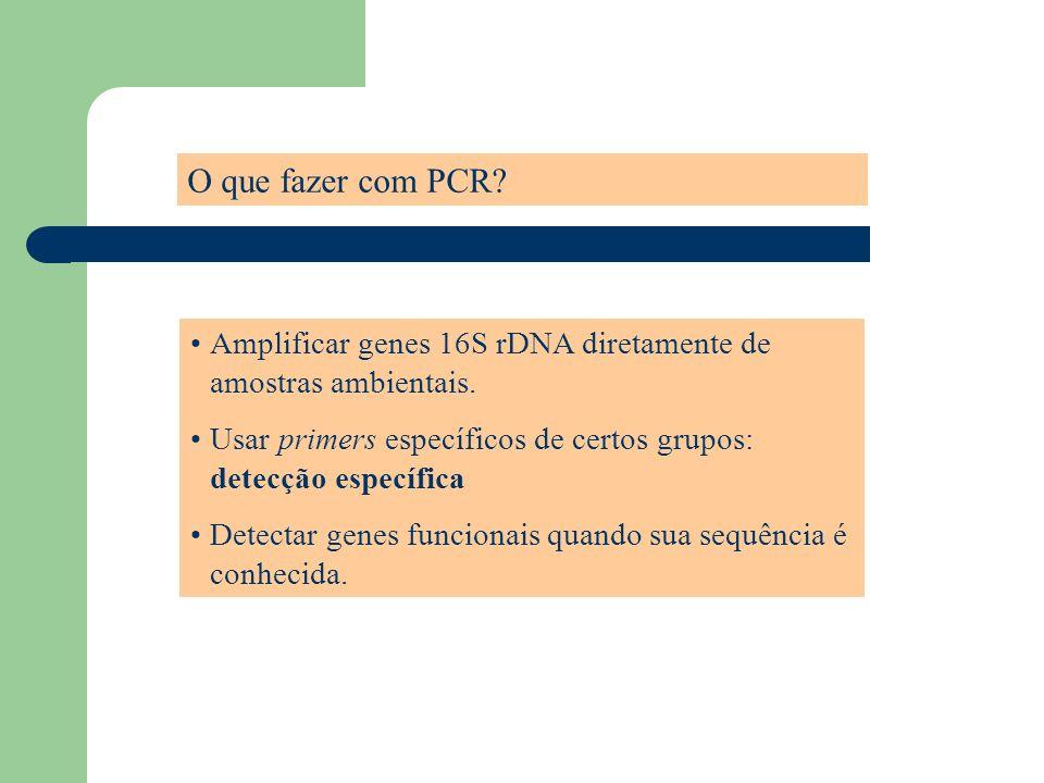 O que fazer com PCR? Amplificar genes 16S rDNA diretamente de amostras ambientais. Usar primers específicos de certos grupos: detecção específica Dete