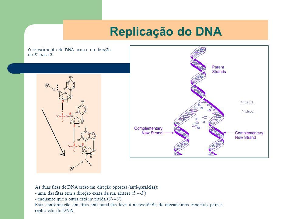 Replicação do DNA Vídeo 1 Vídeo2 O crescimento do DNA ocorre na dire ç ão de 5' para 3' As duas fitas de DNA estão em direção opostas (anti-paralelas)
