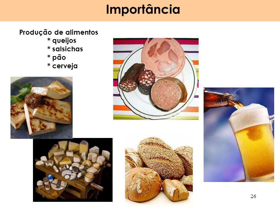 Produção de alimentos * queijos * salsichas * pão * cerveja Importância 26