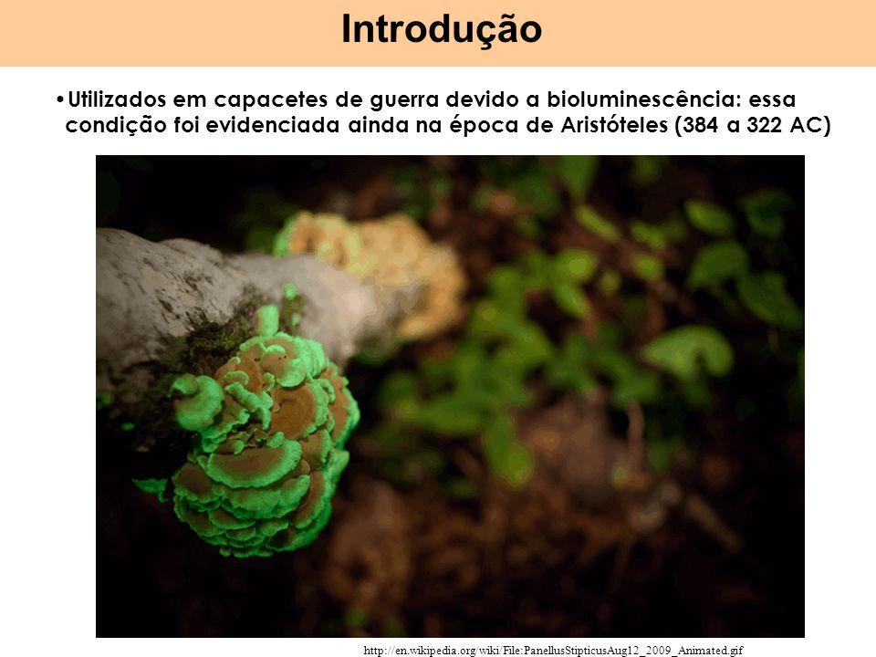 Introdução http://en.wikipedia.org/wiki/File:PanellusStipticusAug12_2009_Animated.gif Utilizados em capacetes de guerra devido a bioluminescência: essa condição foi evidenciada ainda na época de Aristóteles (384 a 322 AC)