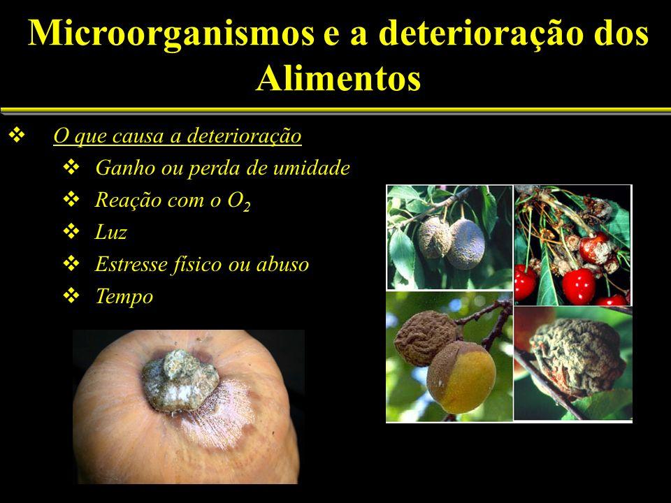 O que causa a deterioração Ganho ou perda de umidade Reação com o O 2 Luz Estresse físico ou abuso Tempo Microorganismos e a deterioração dos Alimento