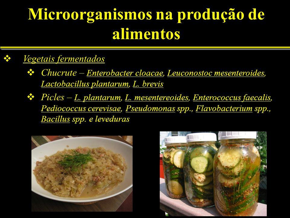 Vegetais fermentados Chucrute – Enterobacter cloacae, Leuconostoc mesenteroides, Lactobacillus plantarum, L. brevis Picles – L. plantarum, L. mesenter