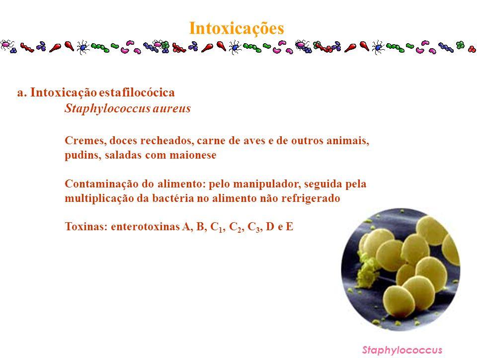 Intoxicações Staphylococcus a. Intoxicação estafilocócica Staphylococcus aureus Cremes, doces recheados, carne de aves e de outros animais, pudins, sa