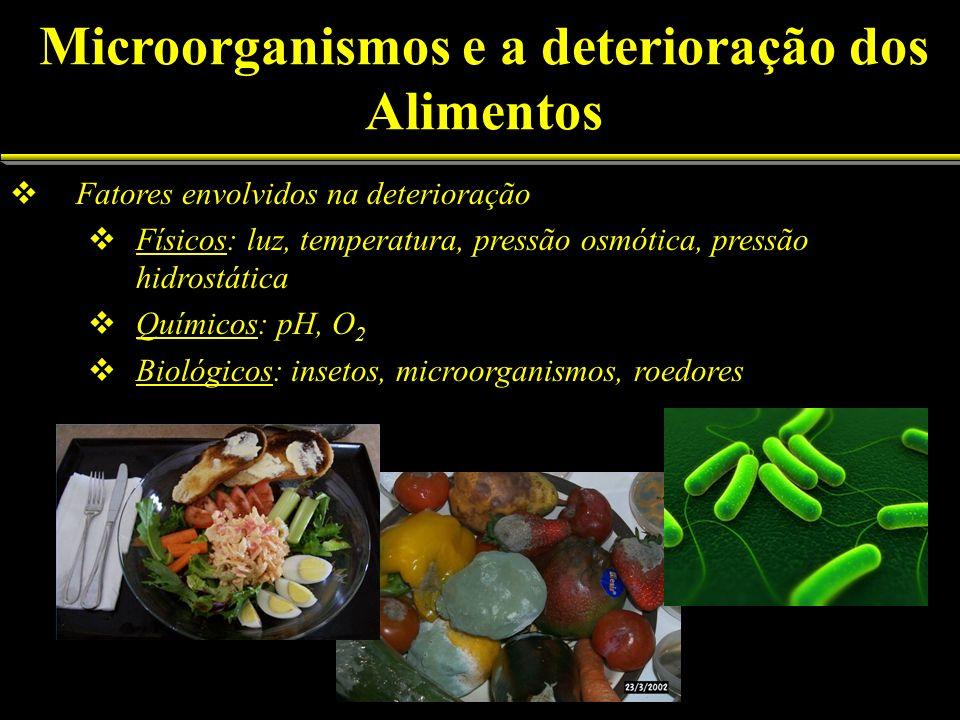O que causa a deterioração Microorganismos A ação das enzimas contidas nos alimentos A infestação por insetos, parasitas e roedores Temperaturas inapropriadas para a conservação Microorganismos e a deterioração dos Alimentos