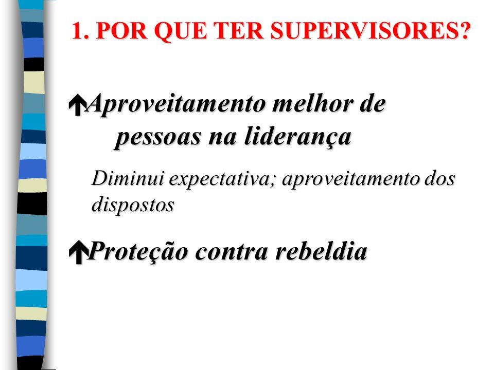 1.POR QUE TER SUPERVISORES.