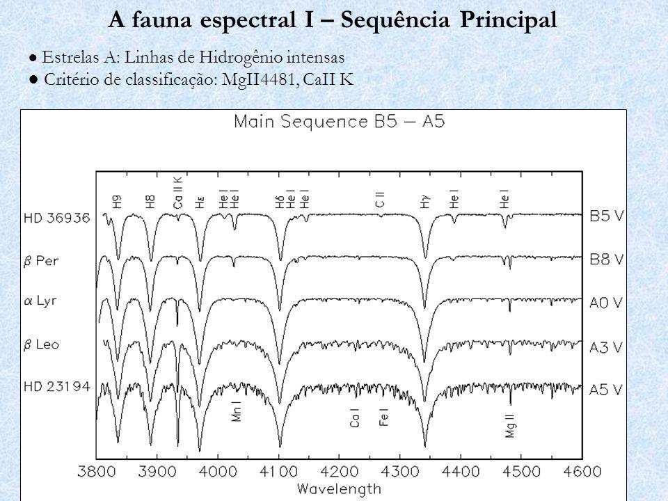 A fauna espectral I – Sequência Principal Estrelas F, G, early-K: Linhas metálicas, H fraco Critério de classificação: CaII K, FeI4046/Hδ, G-Band (banda molecular CH)