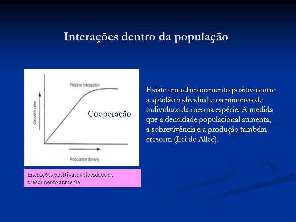 Interações dentro da população Interações positivas: velocidade de crescimento aumenta. Existe um relacionamento positivo entre a aptidão individual e