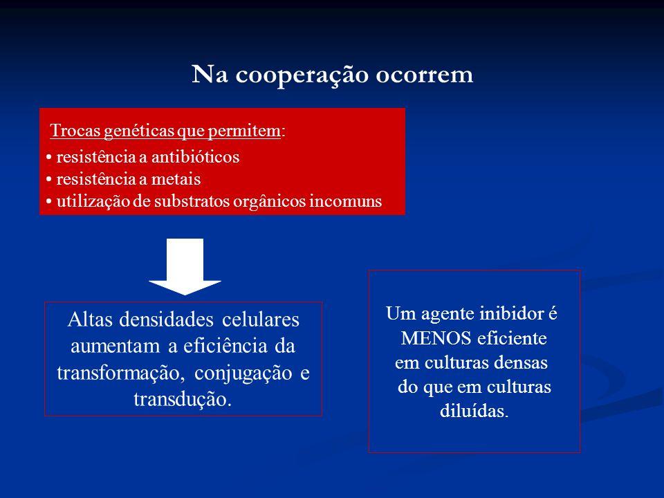 Na cooperação ocorrem Um agente inibidor é MENOS eficiente em culturas densas do que em culturas diluídas. Altas densidades celulares aumentam a efici