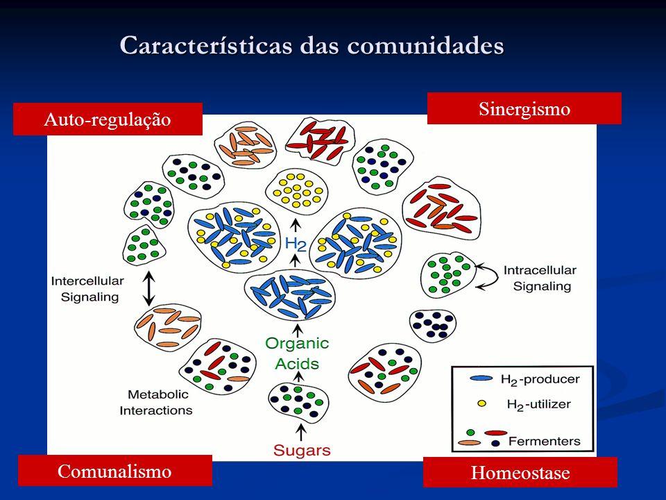 Características das comunidades Auto-regulação Comunalismo Homeostase Sinergismo