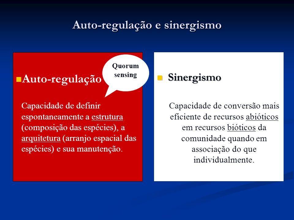 Auto-regulação e sinergismo Auto-regulação Capacidade de definir espontaneamente a estrutura (composição das espécies), a arquitetura (arranjo espacia