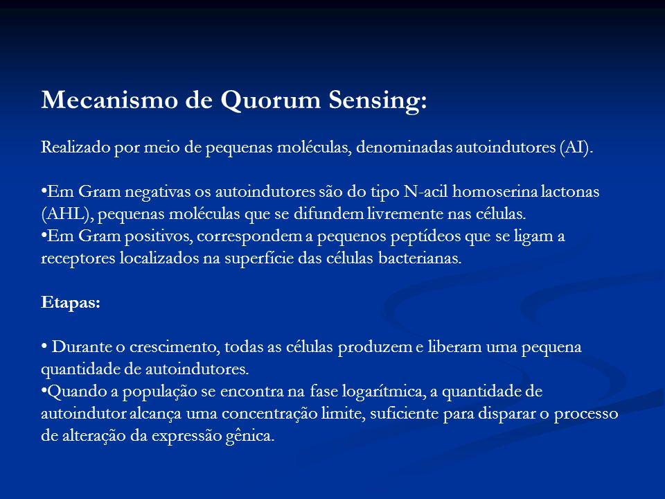 Mecanismo de Quorum Sensing: Realizado por meio de pequenas moléculas, denominadas autoindutores (AI). Em Gram negativas os autoindutores são do tipo