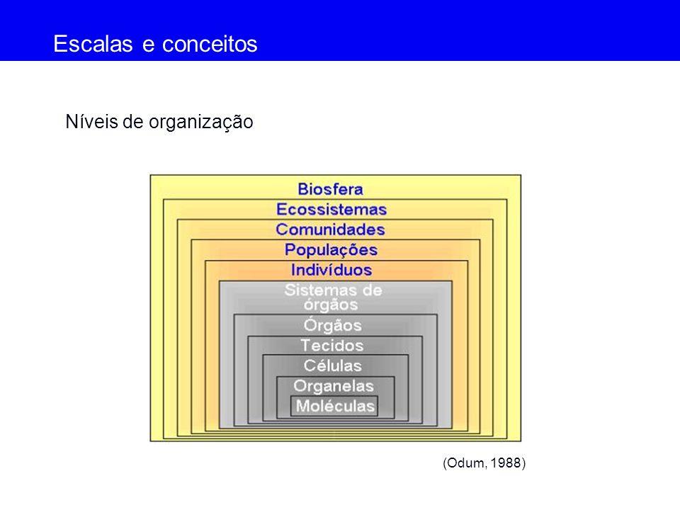 Níveis de organização (Odum, 1988) Escalas e conceitos (Odum, 1988)