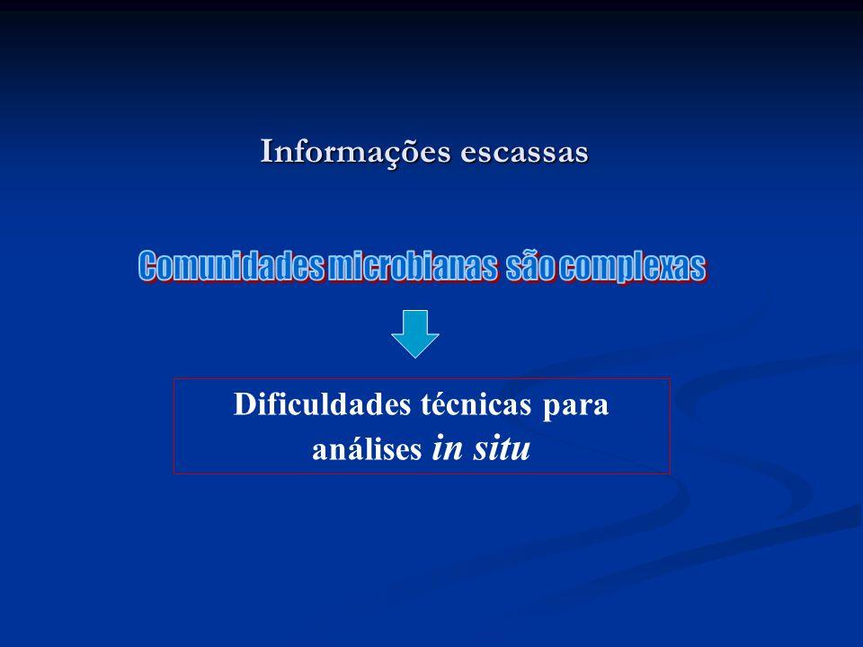 Informações escassas Dificuldades técnicas para análises in situ