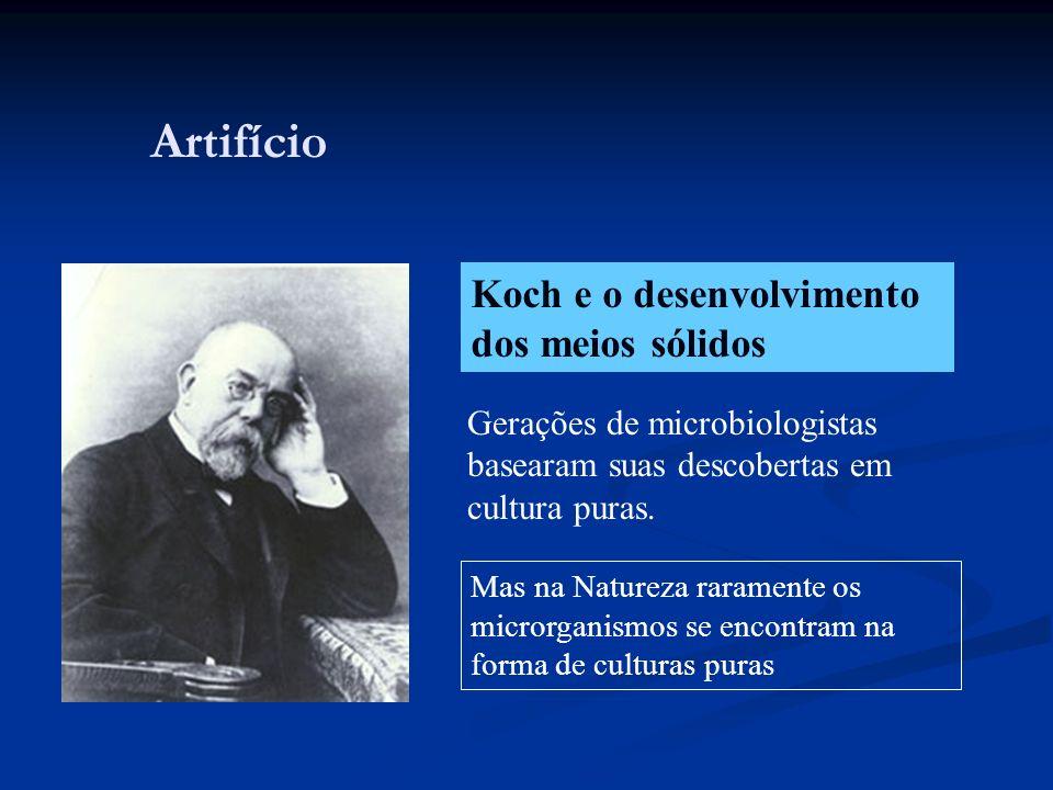 Artifício Koch e o desenvolvimento dos meios sólidos Gerações de microbiologistas basearam suas descobertas em cultura puras. Mas na Natureza rarament