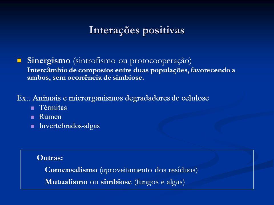 Interações positivas Sinergismo (sintrofismo ou protocooperação) Intercâmbio de compostos entre duas populações, favorecendo a ambos, sem ocorrência d