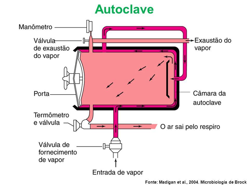 Fonte: Madigan et al., 2004. Microbiologia de Brock Autoclave