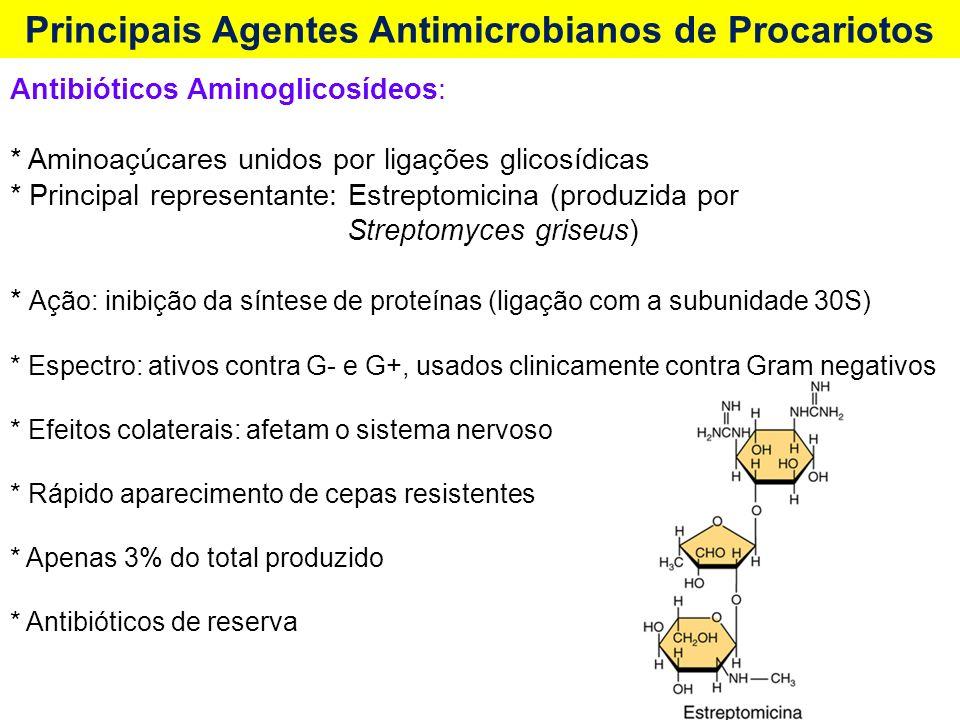 Antibióticos Aminoglicosídeos: * Aminoaçúcares unidos por ligações glicosídicas * Principal representante: Estreptomicina (produzida por Streptomyces griseus) * Ação: inibição da síntese de proteínas (ligação com a subunidade 30S) * Espectro: ativos contra G- e G+, usados clinicamente contra Gram negativos * Efeitos colaterais: afetam o sistema nervoso * Rápido aparecimento de cepas resistentes * Apenas 3% do total produzido * Antibióticos de reserva Principais Agentes Antimicrobianos de Procariotos