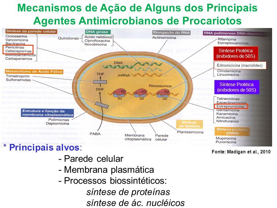 Fonte: Madigan et al., 2010 Mecanismos de Ação de Alguns dos Principais Agentes Antimicrobianos de Procariotos * Principais alvos: - Parede celular - Membrana plasmática - Processos biossintéticos: síntese de proteínas síntese de ác.