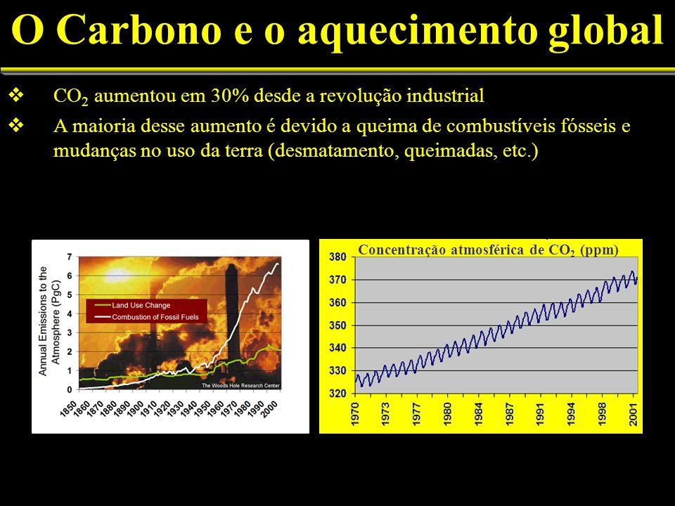 CO 2 aumentou em 30% desde a revolução industrial A maioria desse aumento é devido a queima de combustíveis fósseis e mudanças no uso da terra (desmatamento, queimadas, etc.) O Carbono e o aquecimento global (pp m) Concentração atmosférica de CO 2 (ppm)
